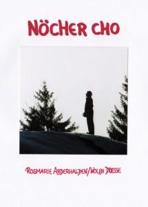 Publikation - Noecher Cho Seite 1